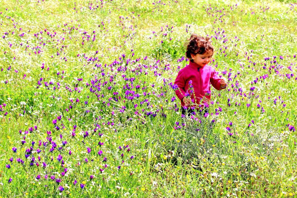 Download Free Stock HD Photo of Sweet little child in a meadow with wild purple spring flowers Online