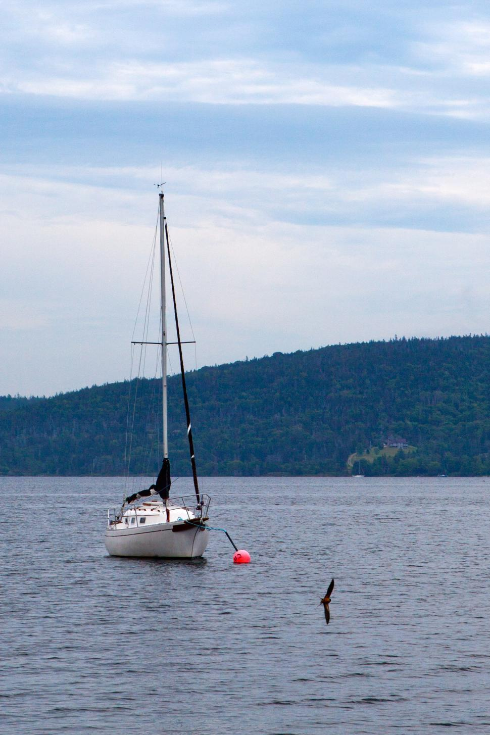 Download Free Stock HD Photo of Sailing Yacht Online