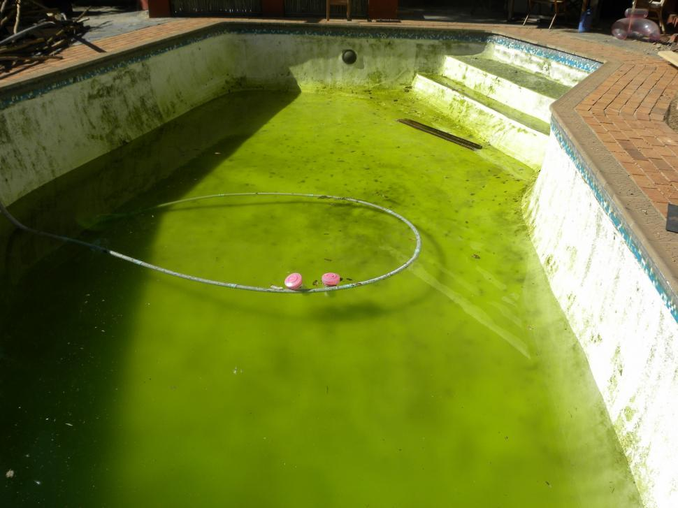 Download Free Stock Photo of Dirty Pool