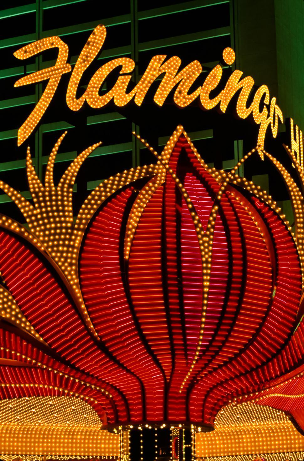 Download Free Stock Photo of Neon Flamingo Hotel Sign