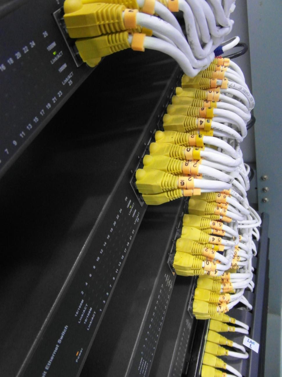 Download Free Stock Photo of Server Network Cables