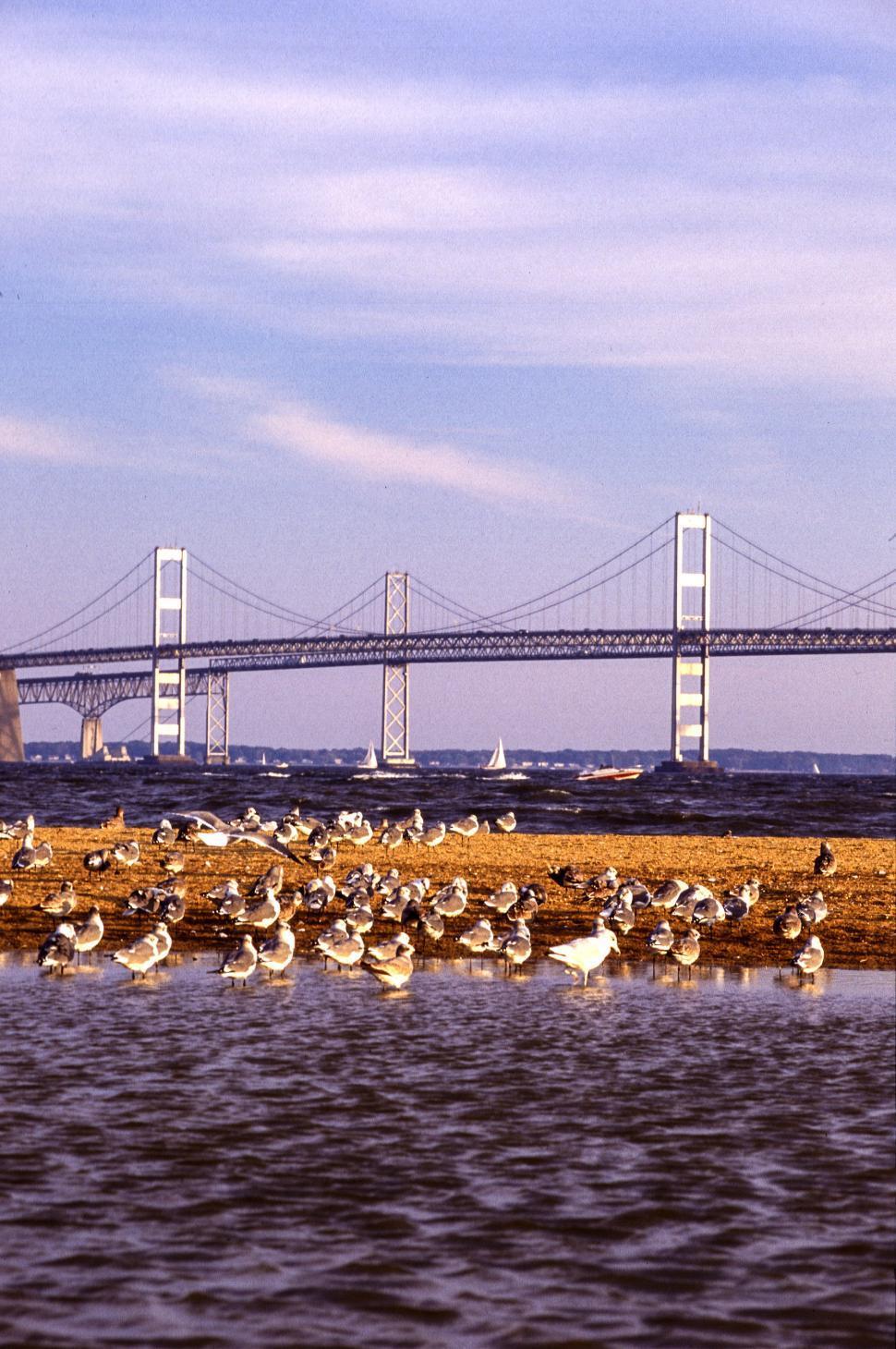 Download Free Stock HD Photo of Chesapeake Bay Bridge Online