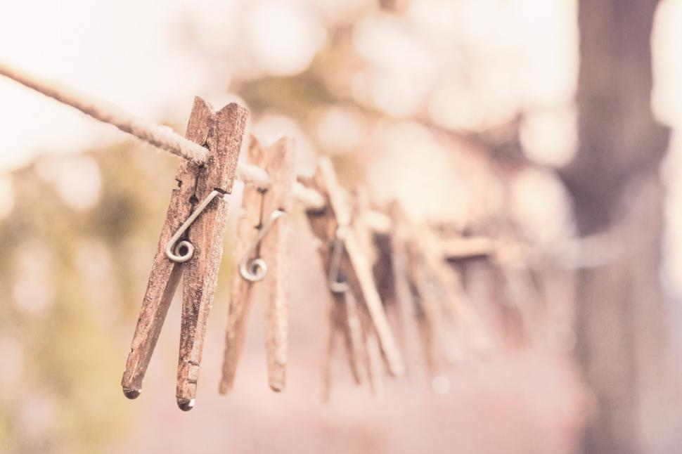 Download Free Stock HD Photo of Wooden Cloth Pegs Online