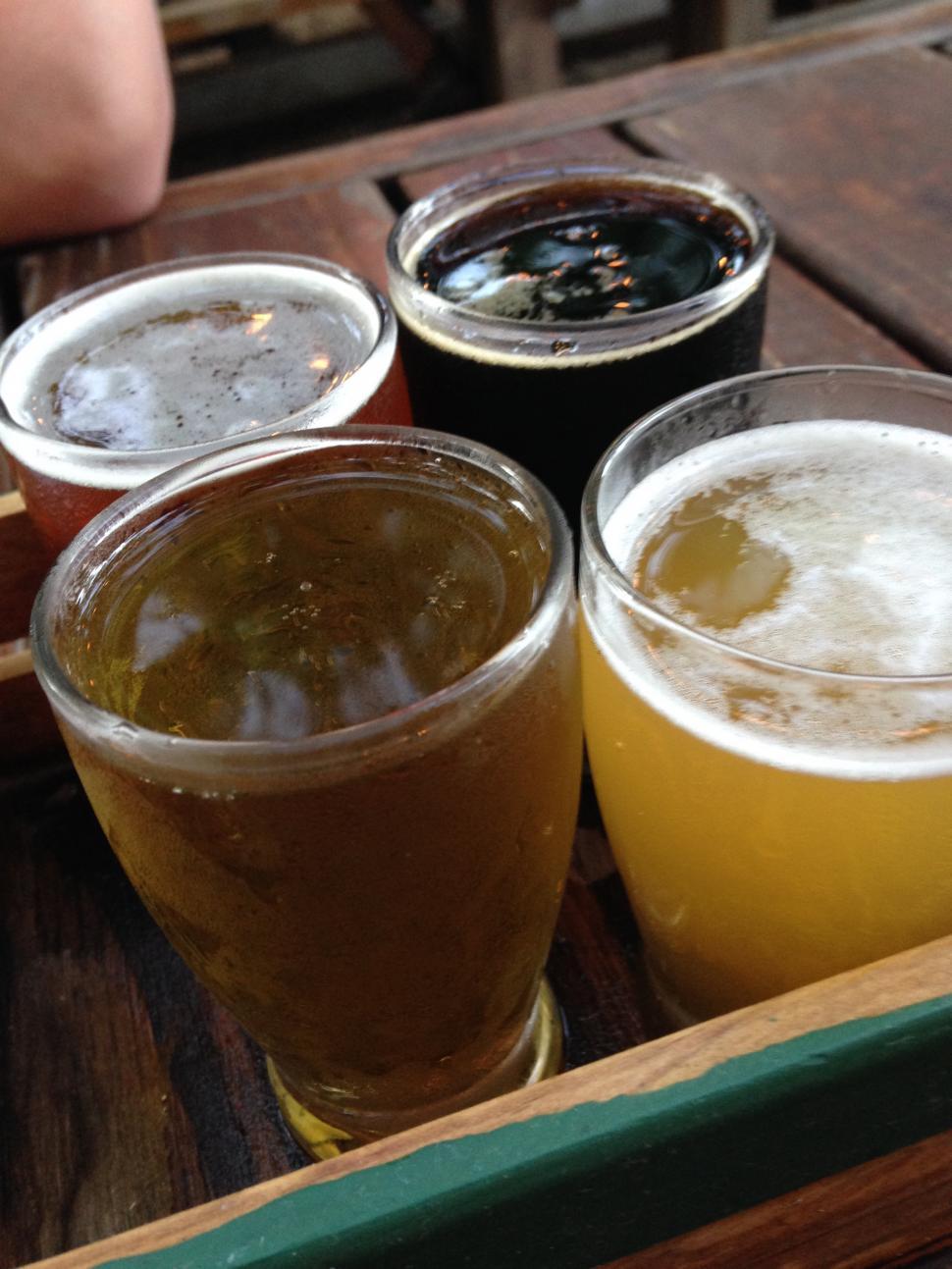 Download Free Stock HD Photo of Beer Tasting Online