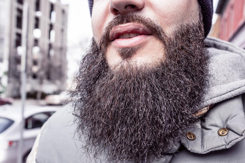 Download Free Stock Photo of Beard