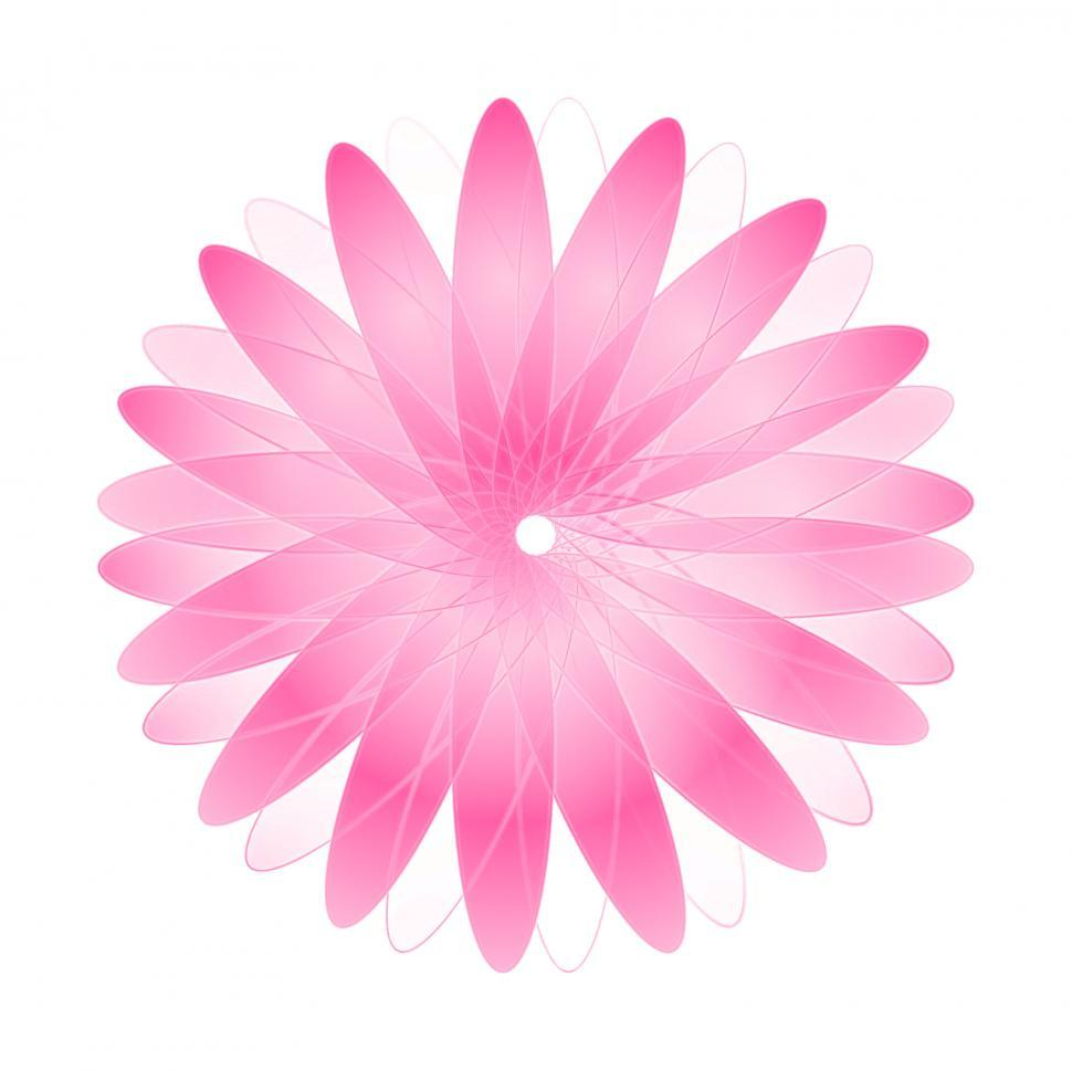 Download Free Stock Photo of Pink Abstract Daisy