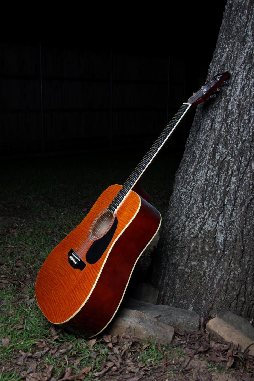 Download Free Stock HD Photo of Guitar leaning against a tree. Online