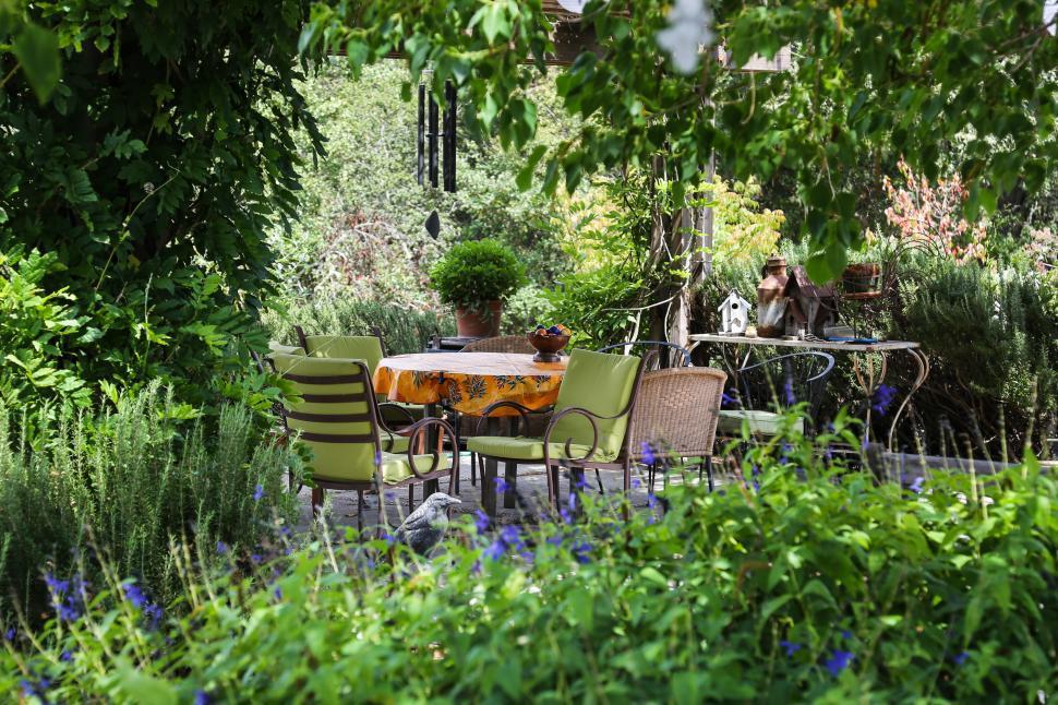 Download Free Stock Photo of Garden