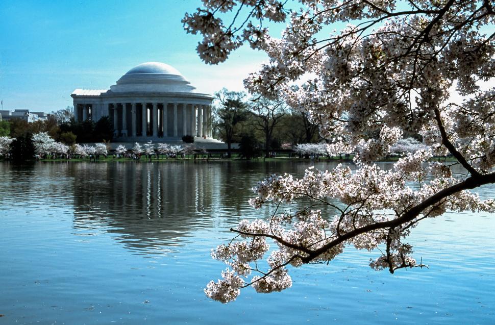 Download Free Stock Photo of Jefferson Memorial