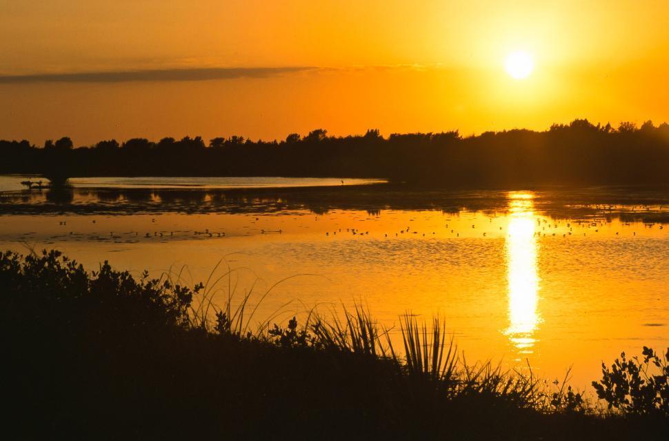 Download Free Stock Photo of Merritt Island Sunset