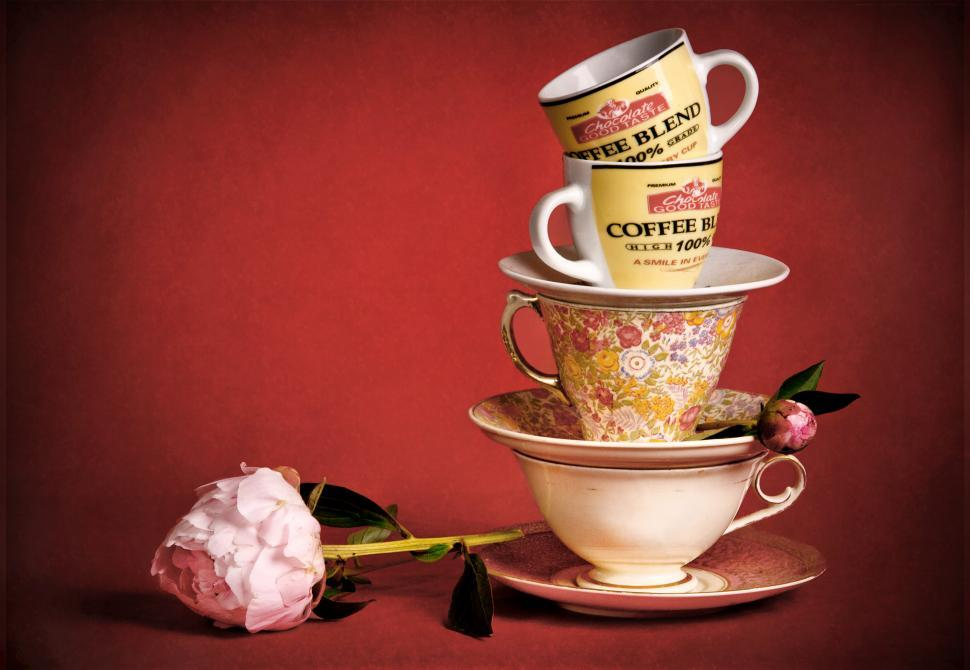 Download Free Stock Photo of Still life with tea cups and rose
