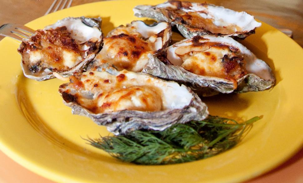 Download Free Stock Photo of Oysters on plate