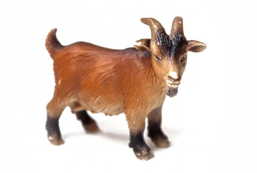 Download Free Stock Photo of Goat plastic toy for kids