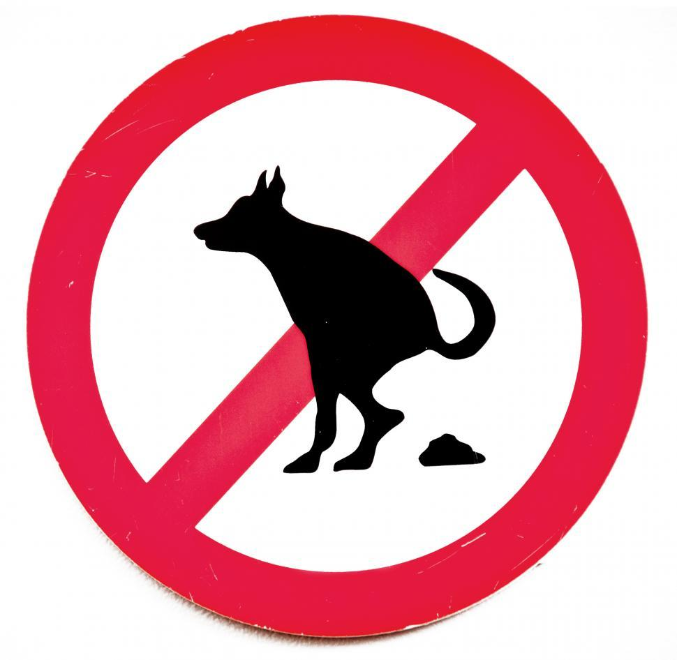 Download Free Stock Photo of  no dog poop sign