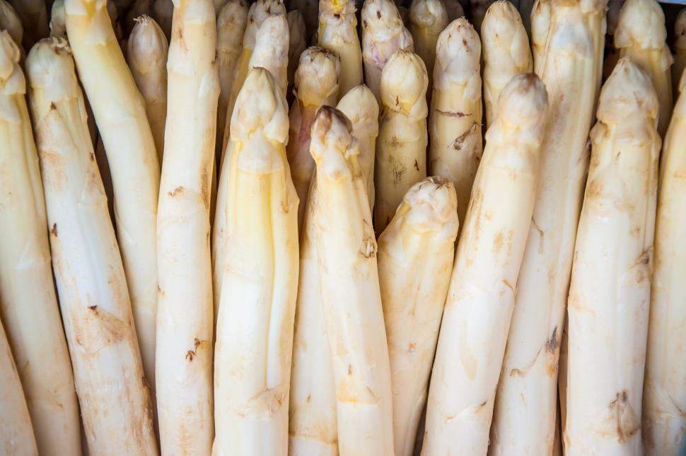 Download Free Stock HD Photo of White Asparagus Online