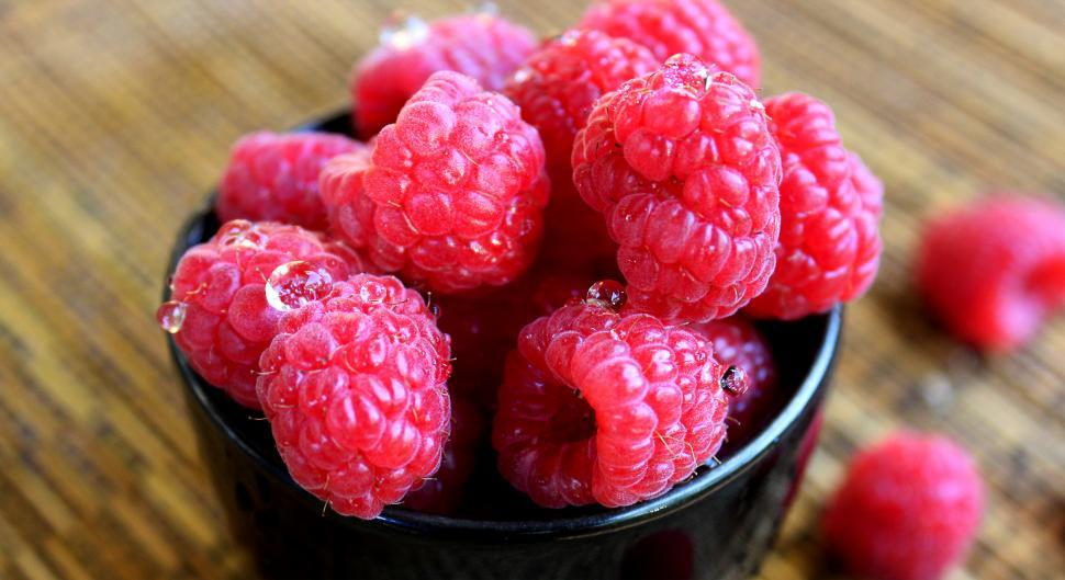 Download Free Stock Photo of Fresh raspberries with water drops