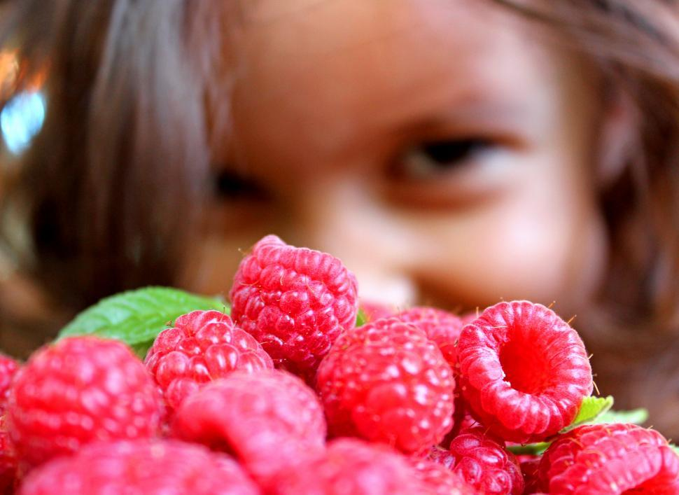 Download Free Stock Photo of girl and raspberries