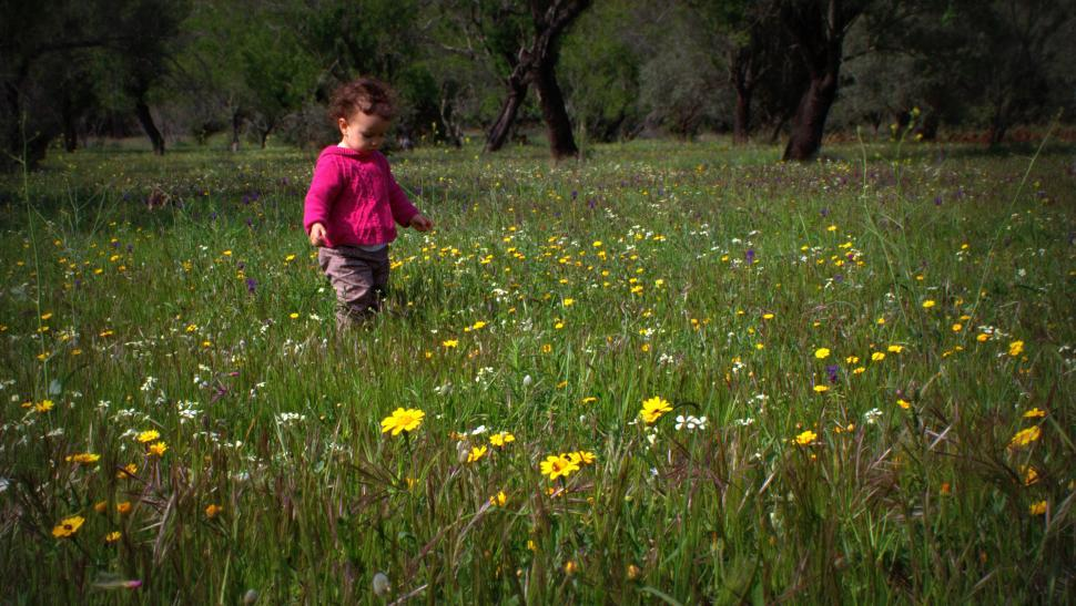 Download Free Stock HD Photo of Sweet baby girl in a meadow with wild spring flowers Online