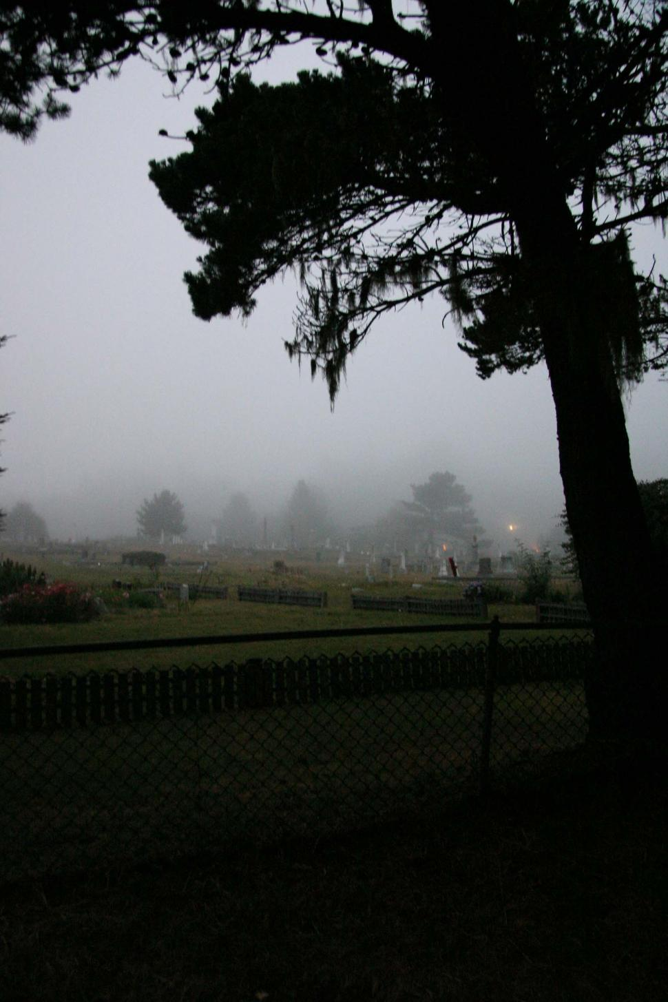 Download Free Stock Photo of Cemetery fog