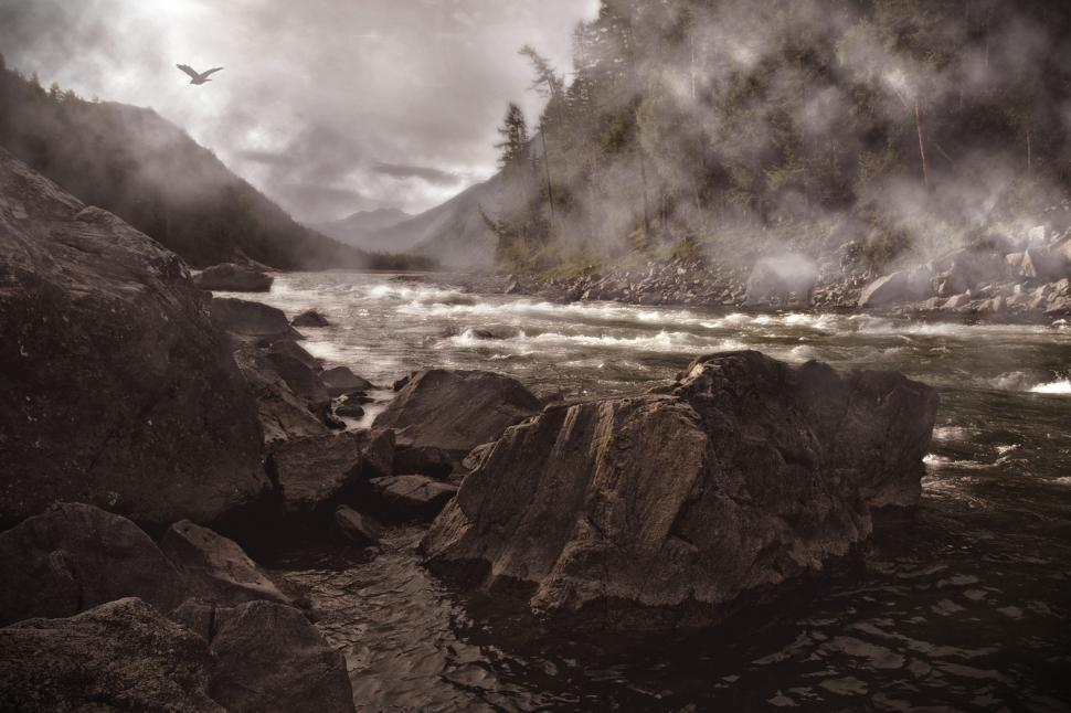 Download Free Stock Photo of Mystic Misty River