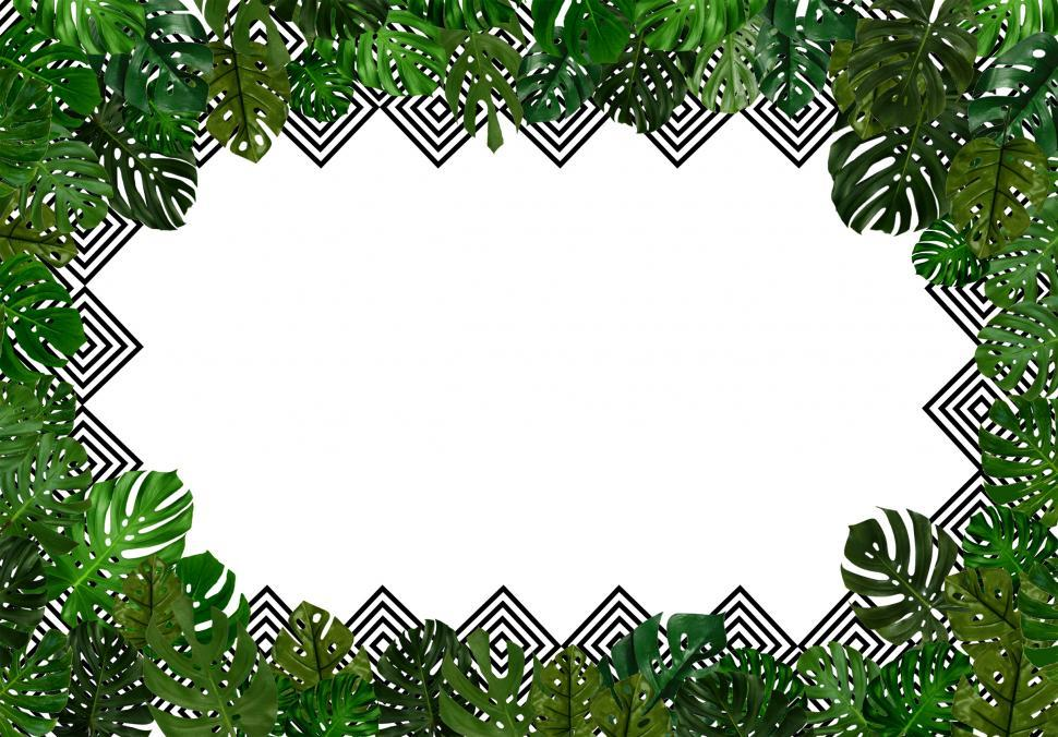 Download Free Stock Photo of Tropical leaves background with copyspace