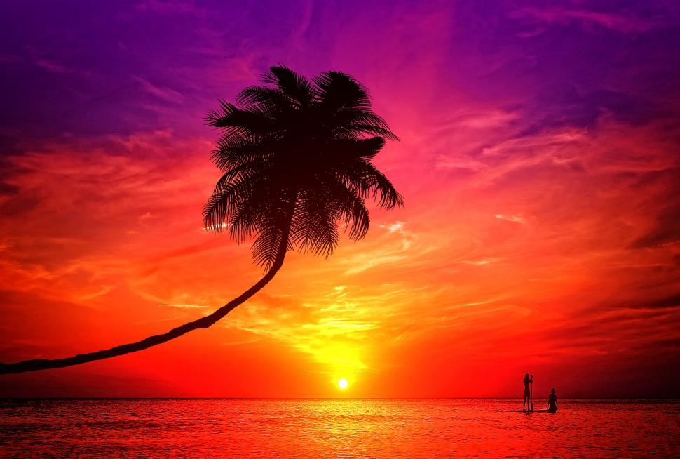 Download Free Stock Photo of A romantic couple enjoying the sunset in a tropical island