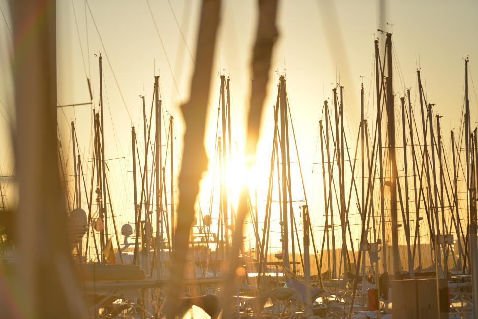 Download Free Stock Photo of Sunrise at marina