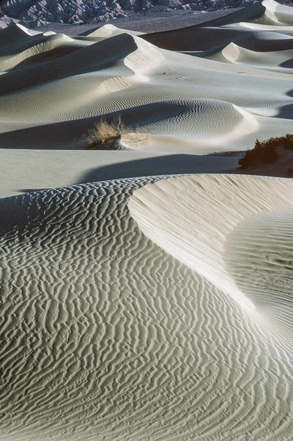 Download Free Stock Photo of Sand Dunes