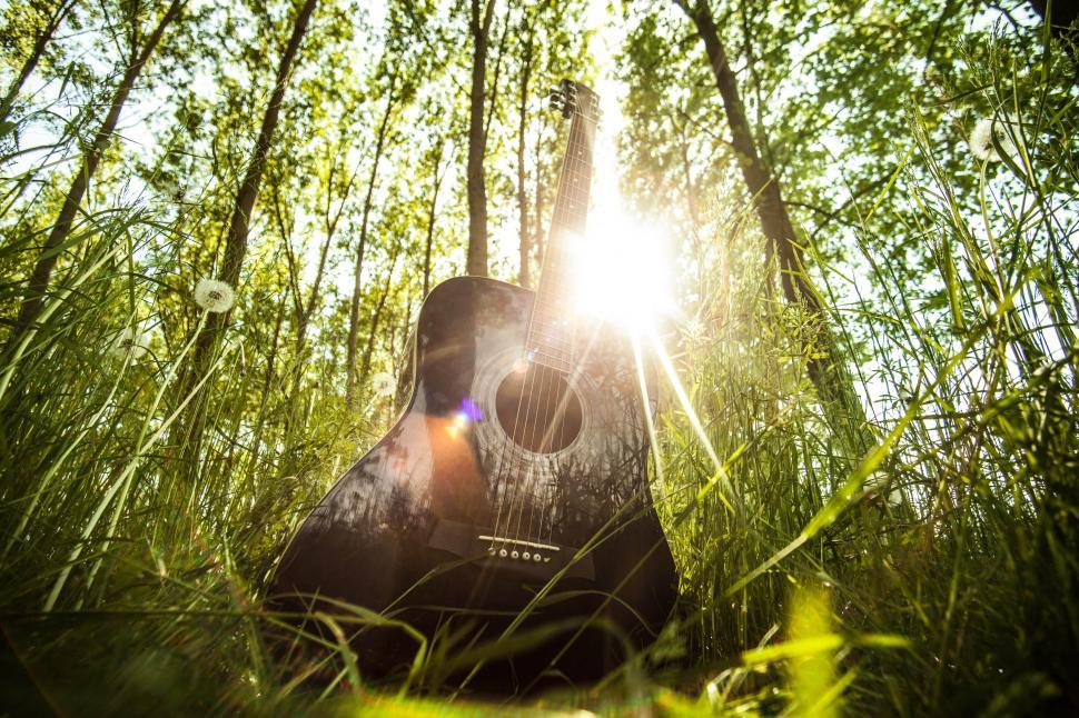 Download Free Stock Photo of Guitar and sunshine