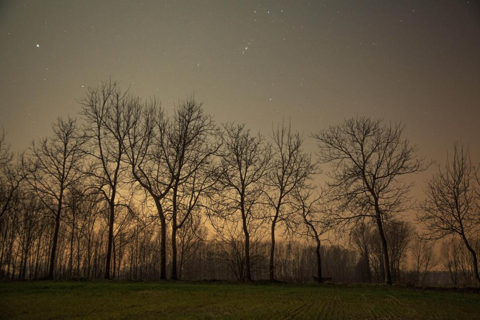 Download Free Stock HD Photo of  Night sky full of stars  Online