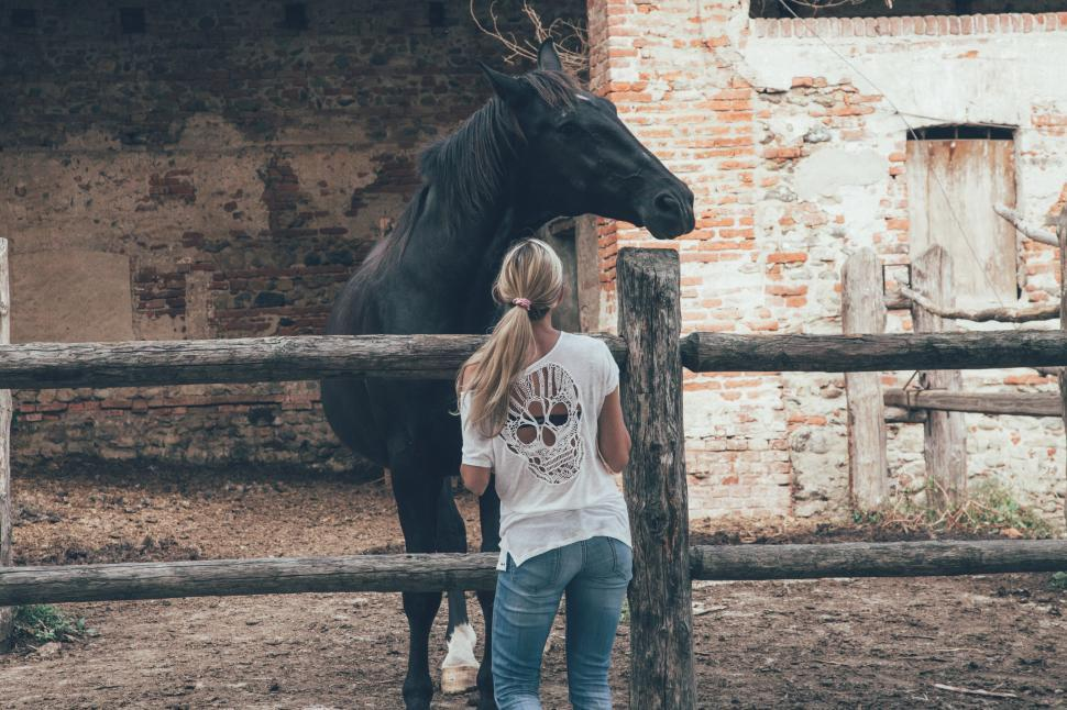 Download Free Stock Photo of Woman standing by horse in stable