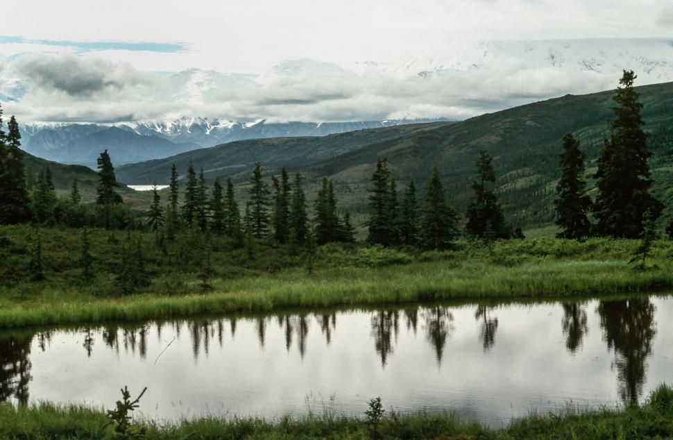 Download Free Stock HD Photo of Denali National Park and Preserve Online
