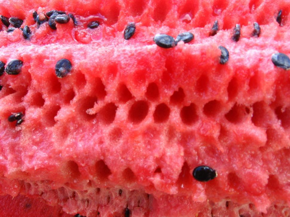 Download Free Stock Photo of Watermelon