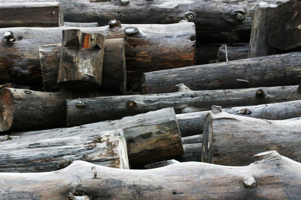 Download Free Stock HD Photo of Logs cut and stacked Online
