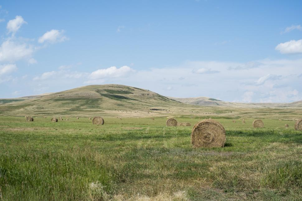 Download Free Stock Photo of hay fodder knoll feed food landscape mound field rural farm sky countryside agriculture