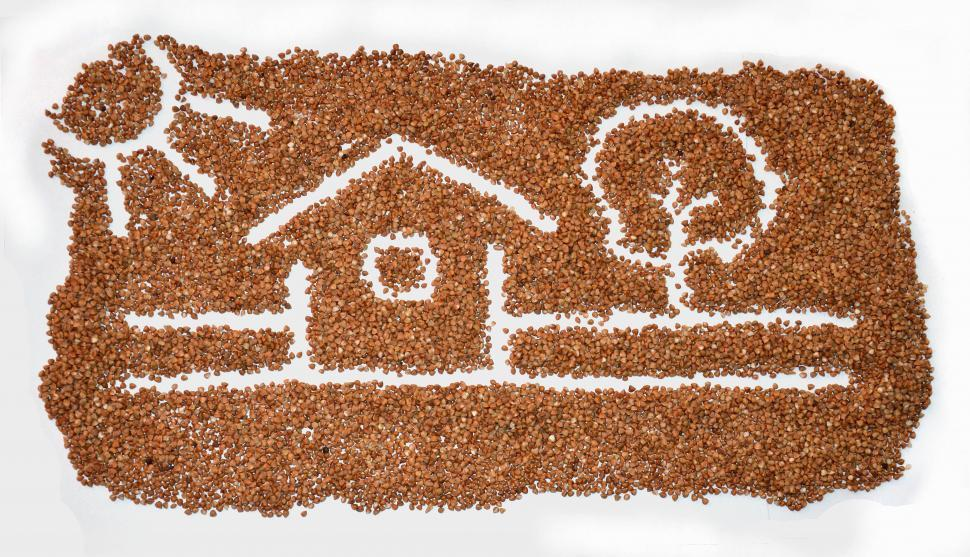 Download Free Stock HD Photo of House scene drawing on buckwheat.  Online
