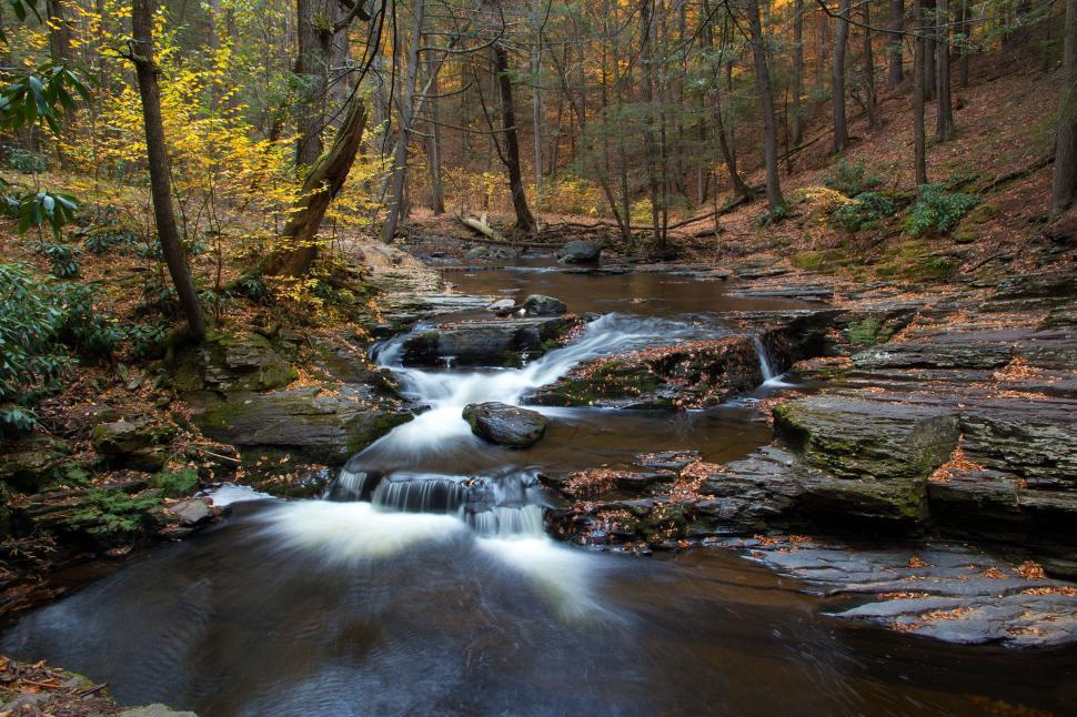 Download Free Stock Photo of Dingmans Creek Up Stream of Dingmans Falls