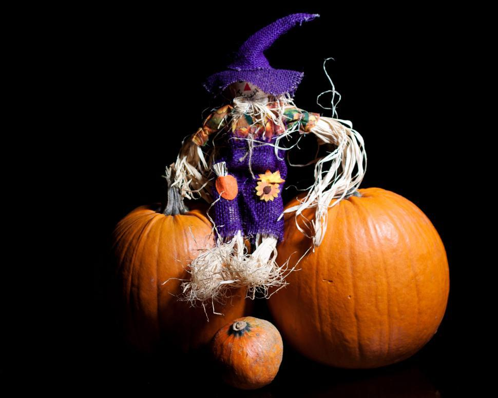 Download Free Stock HD Photo of Halloween Online