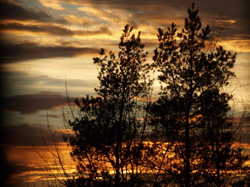 Download Free Stock HD Photo of Orange Evening Sunset  Online