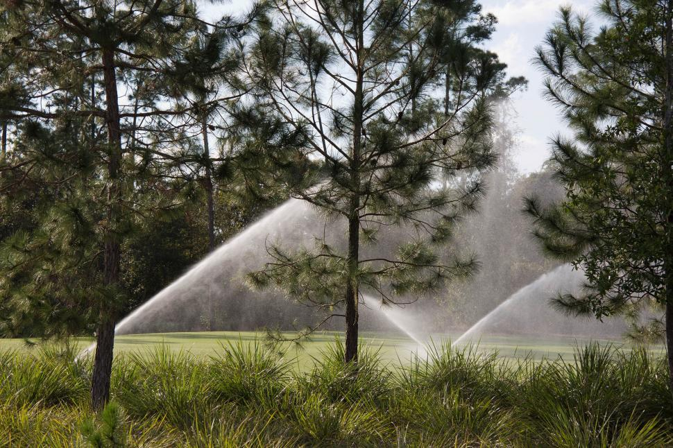 Download Free Stock HD Photo of Sprinklers on a lawn with trees Online