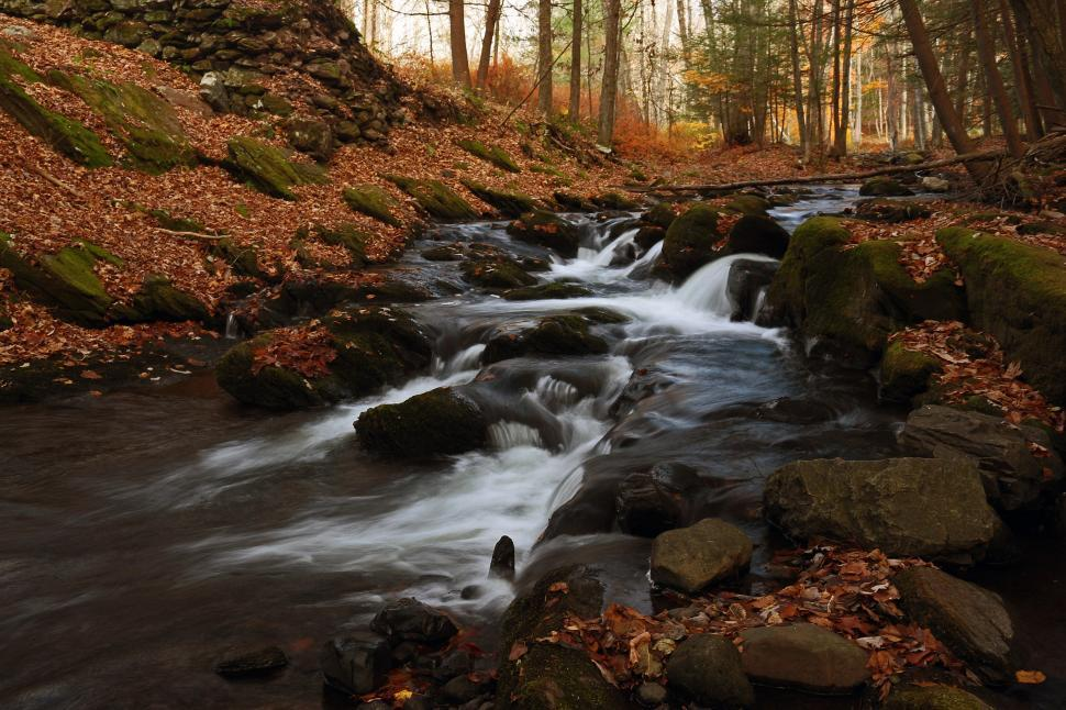 Download Free Stock Photo of Van Campens Brook Cascade in Fall
