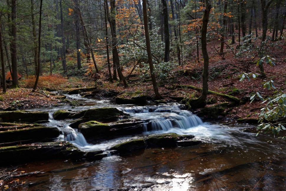 Download Free Stock HD Photo of Van Campens Brook Small Cascade Online