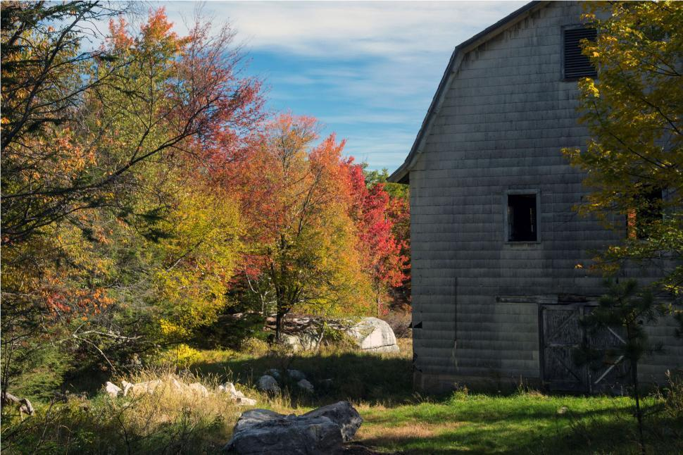 Download Free Stock Photo of Old Barn In The Woods