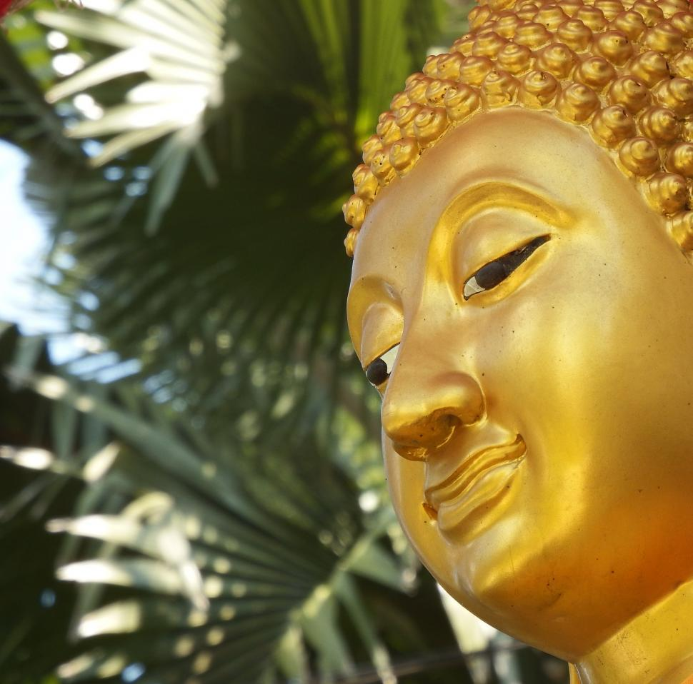 Download Free Stock Photo of Golden Buddha Face 3