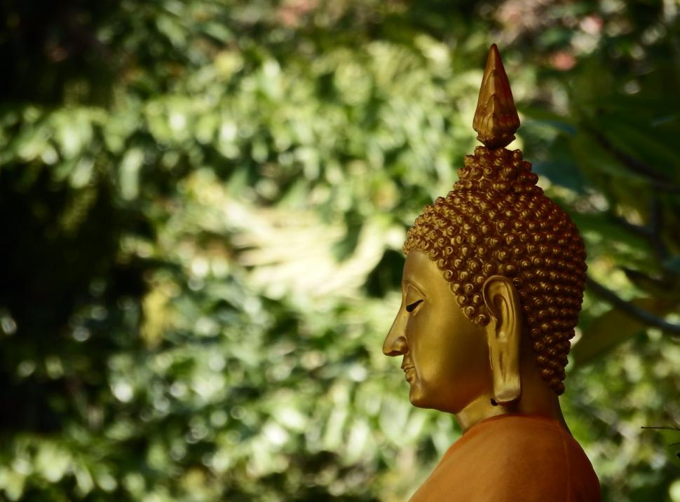 Download Free Stock Photo of Golden Buddha Face