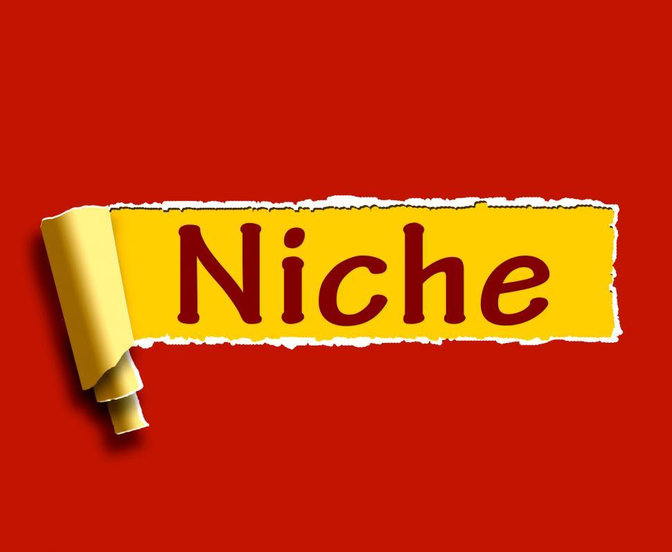 Download Free Stock Photo of Niche Word Shows Web Opening Or Specialty