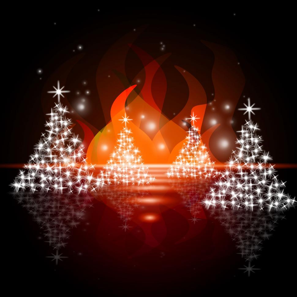 Download Free Stock Photo of Xmas Tree Indicates Merry Christmas And Blazing