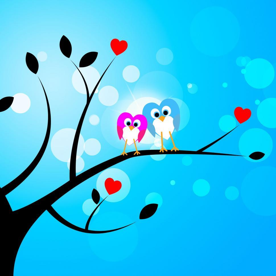 Download Free Stock Photo of Tree Owls Represents Valentine s Day And Forest