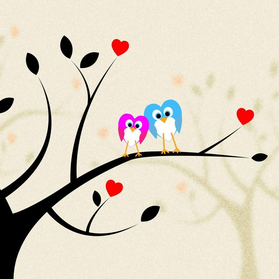 Download Free Stock HD Photo of Tree Owls Indicates Heart Shapes And Branch Online