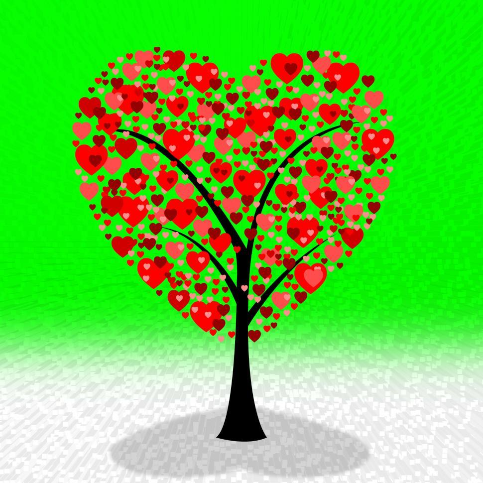 Download Free Stock Photo of Hearts Tree Means Valentine s Day And Environment